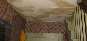 Ceiling Leak Causing Mold Damage