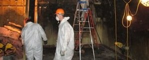 Mold Damage Restoration Technician Working In Basement